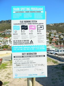 shark nets at Fish Hoek beach