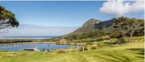 Possibly the most picturesque of the Cape Town Vineyards